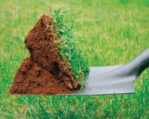 deco-jardin-lutter-contre-les-mauvaises-herbes-de-son-gazon-2509199